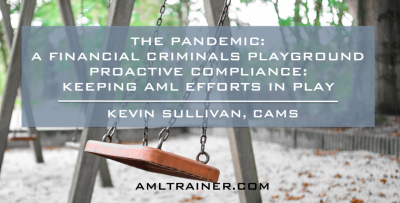 THE PANDEMIC: A Financial Criminals Playground  | PROACTIVE COMPLIANCE: Keeping AML Efforts In Play